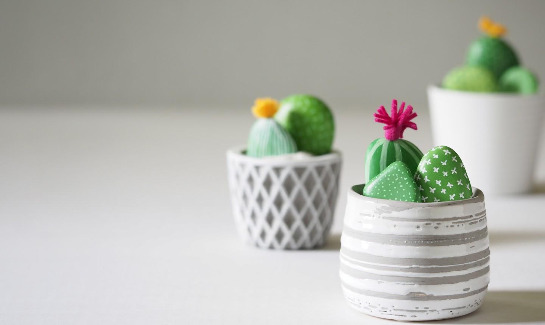 cactus rock gardens