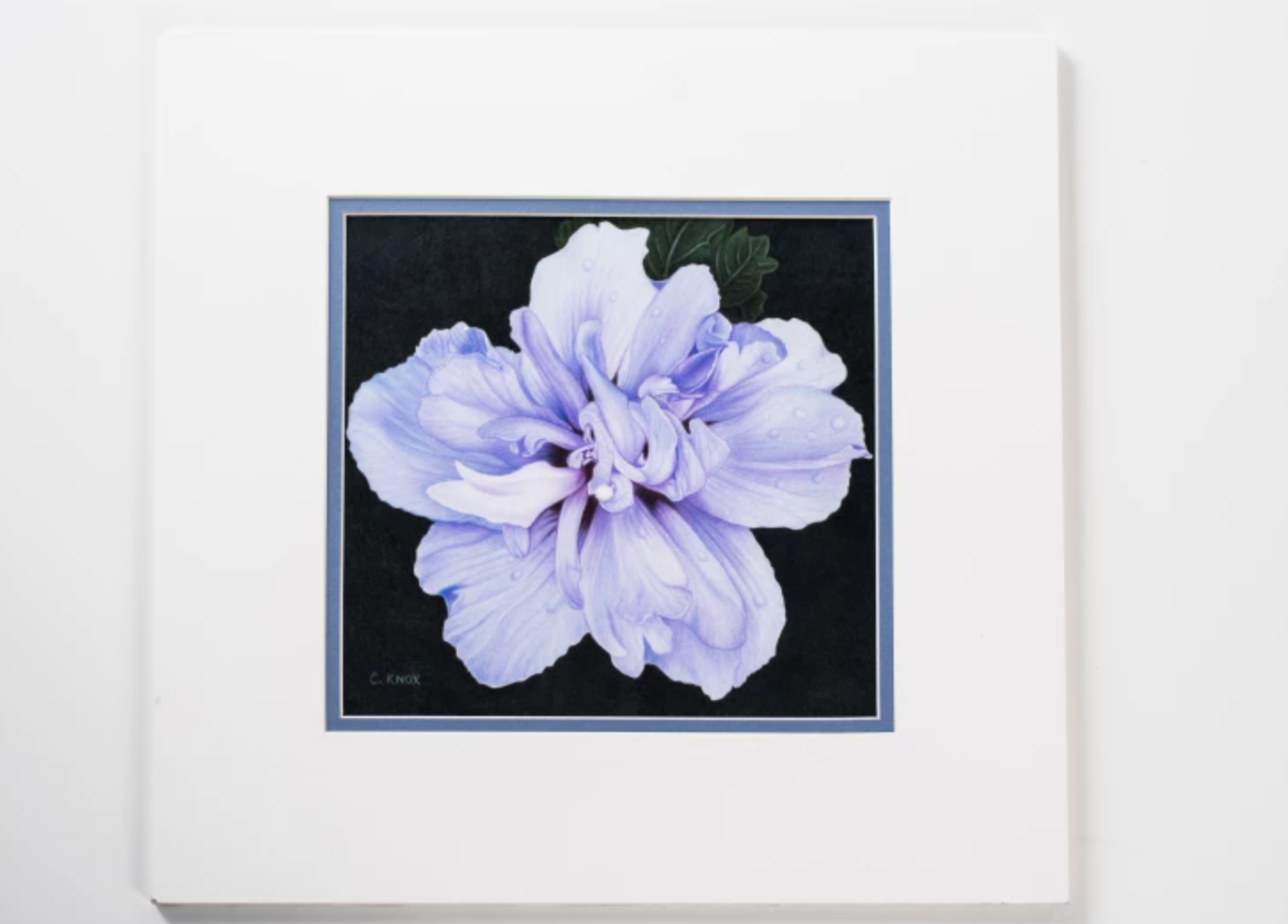 realistic blue flower drawing
