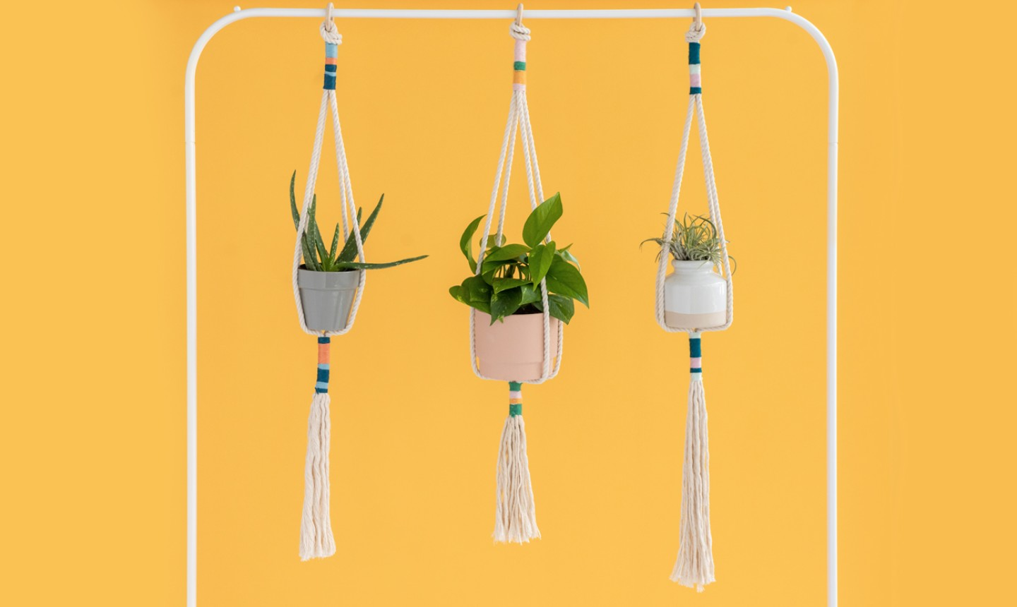 knotted plant hangers