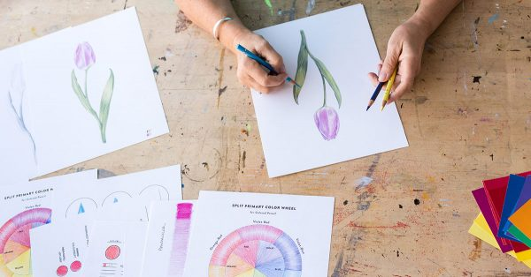 Person drawing a tulip with colored pencils