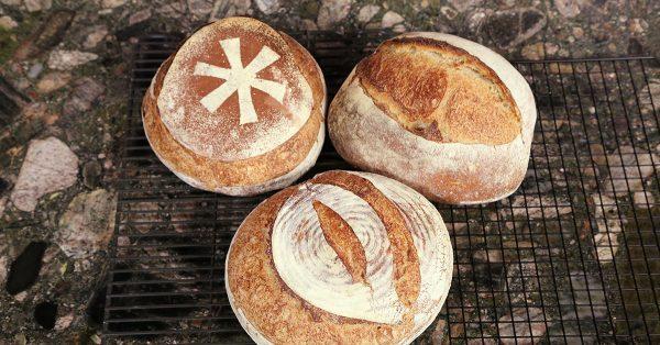 Three different breads