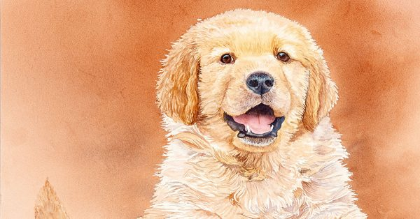 Watercolor dog painting