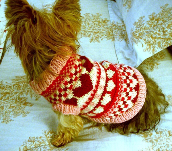 Puppy Love dog sweater