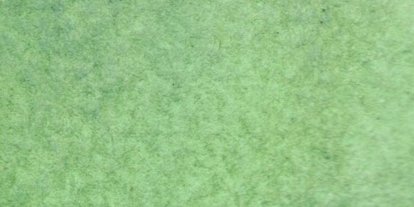 Sap Green andCobalt blue