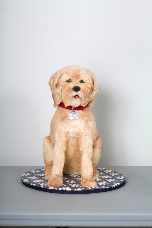 Sculpted Dog Cake - Bluprint Instructor Cake
