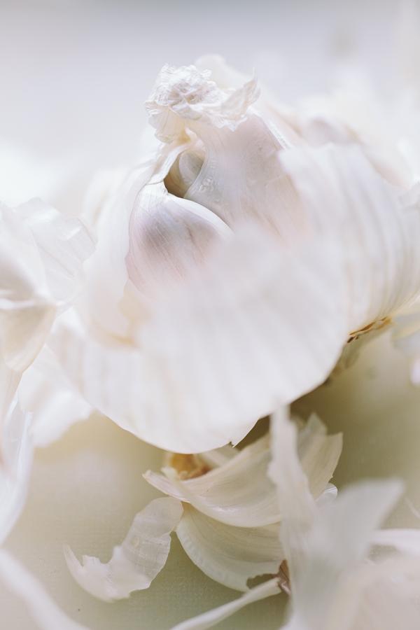 Closeup Shot of Garlic Bulb