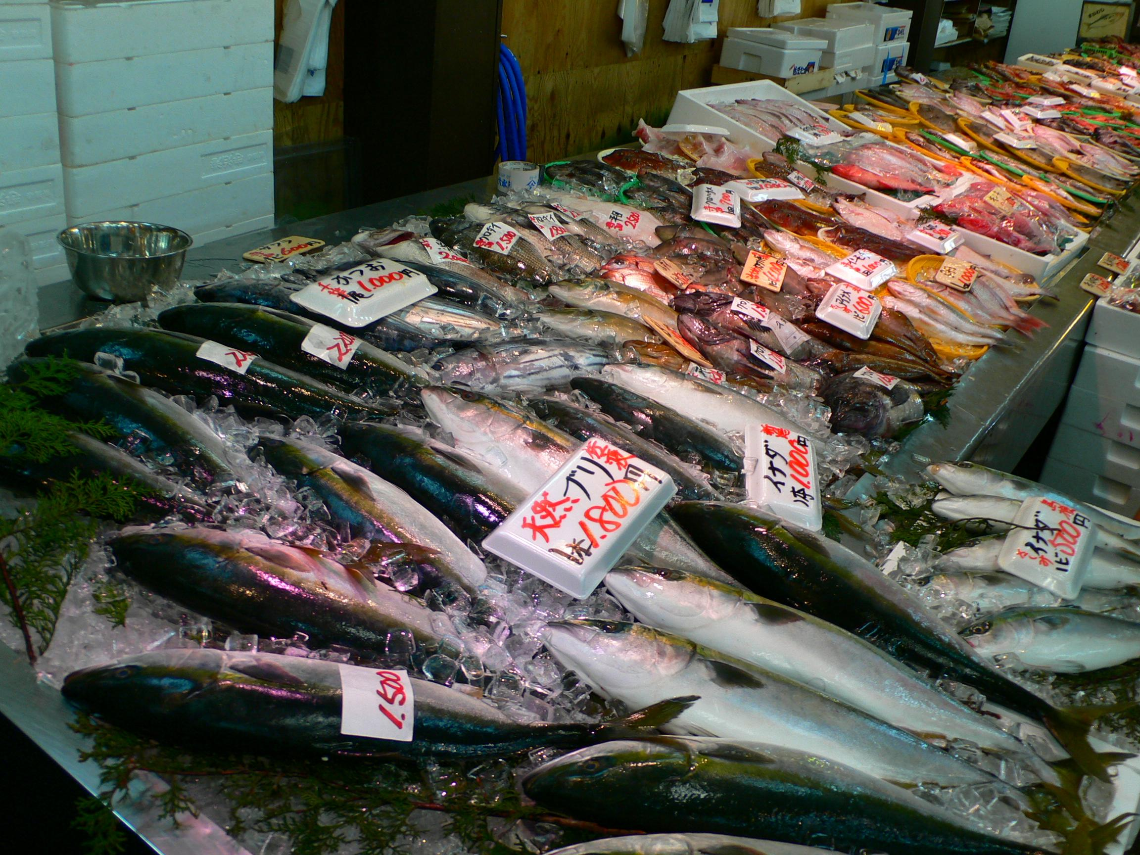 Fish Counter at an Asian Market