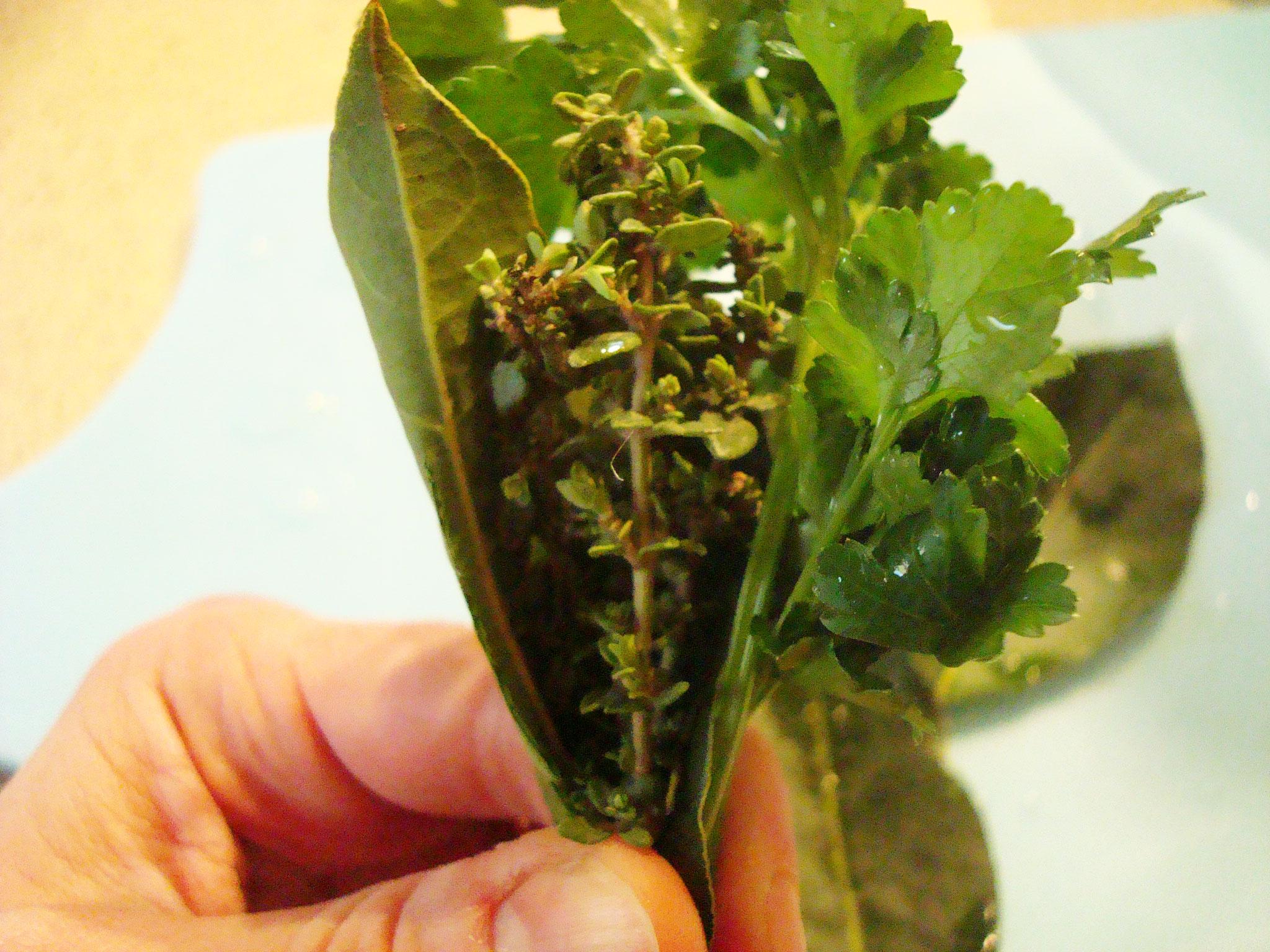 Creating the Bouquet Garni Seasoning Bunch