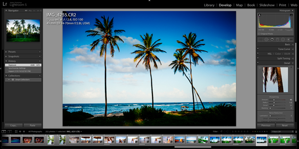 Editing an Image in Adobe Lightroom