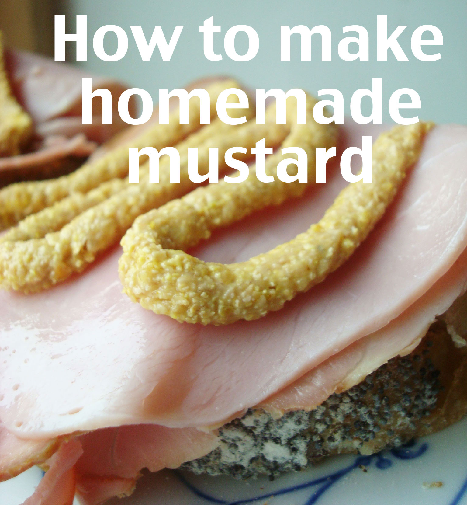 Title Image: How to Make Homemade Mustard