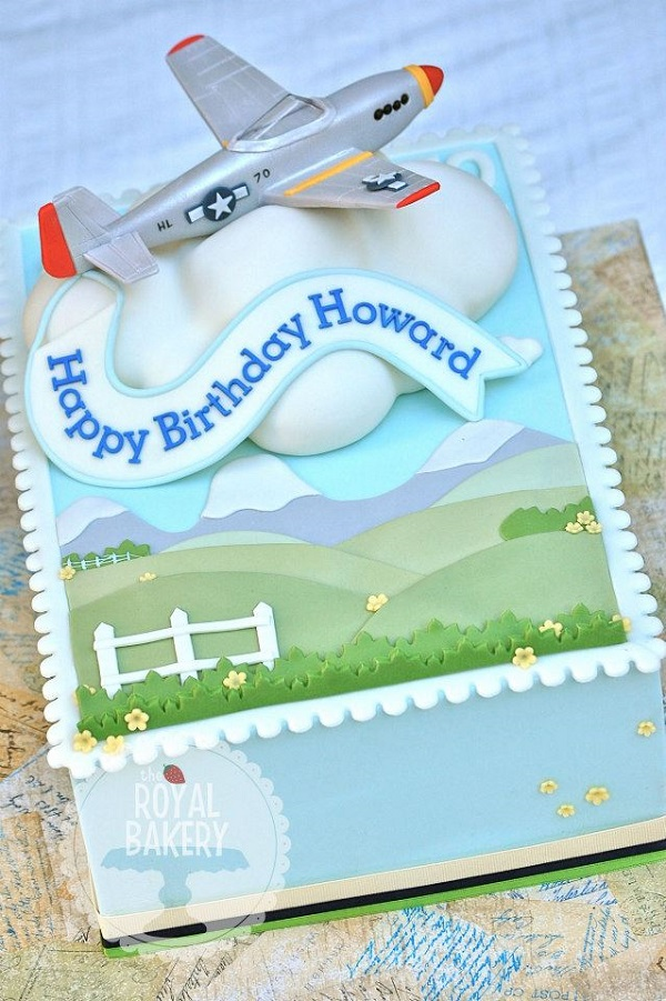 Silver Airplane Cake