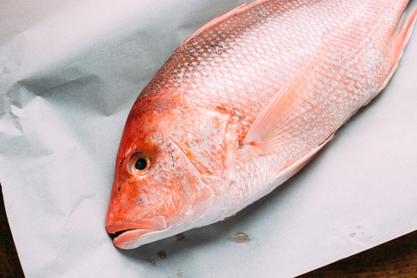 Red-Snapper for Salted Oven Baked Fish