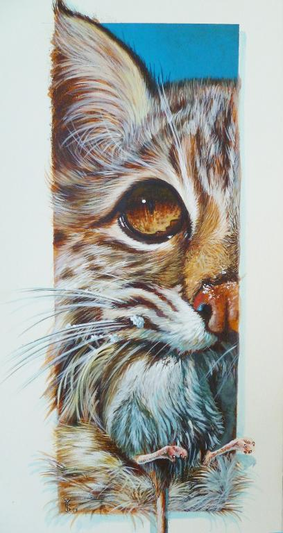Cat and Mouse: Bluprint Member Painting