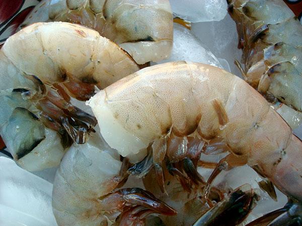 Fresh, Uncooked Shrimp