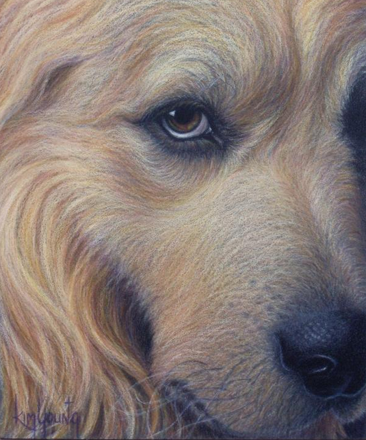 Painting of Dog - Bluprint Pet Portrait Contest