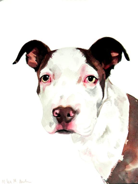 Bluprint.com: Portrait of Dog