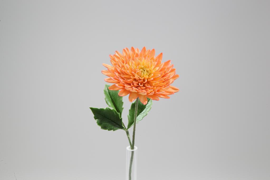 Dahlia Sugar Flower - Made in Bluprint Class