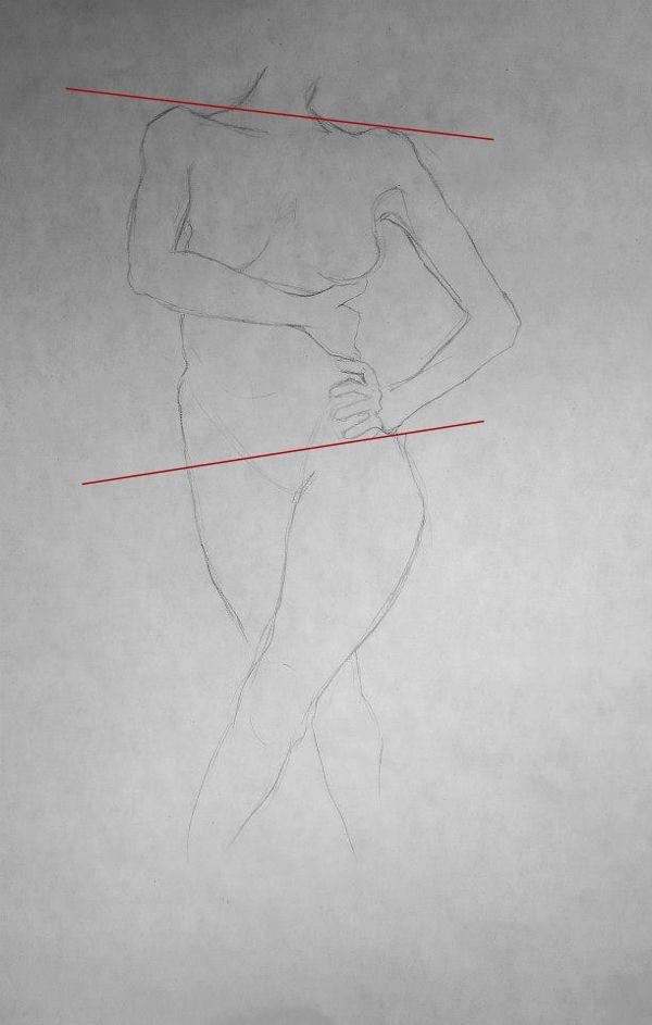 Angles for Drawing Human Torso