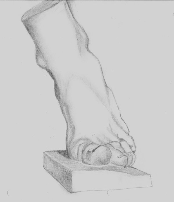 Drawing of the foot after Charles Bargue