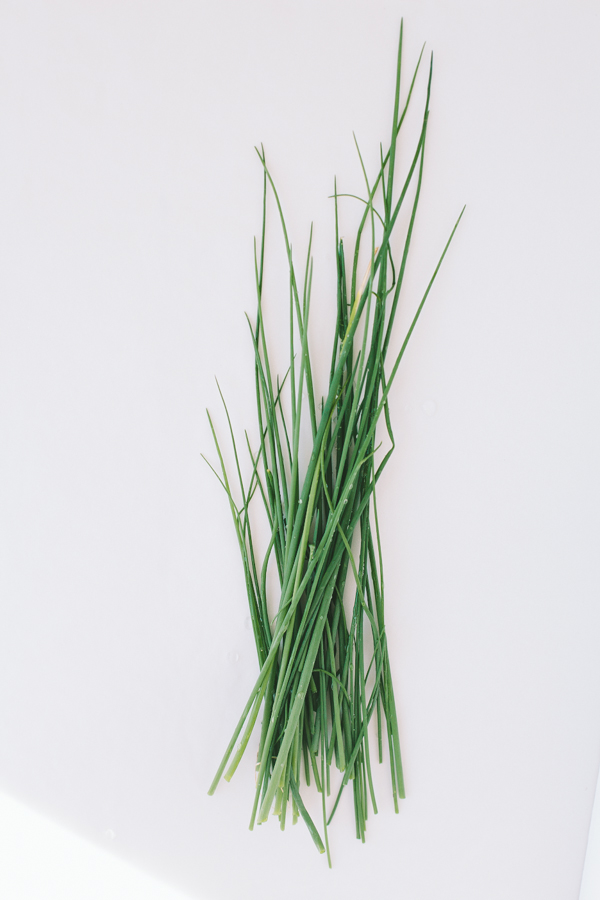 Freshly picked spring chives