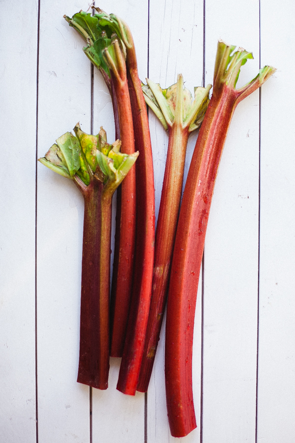 Bright Rhubarb Stalks