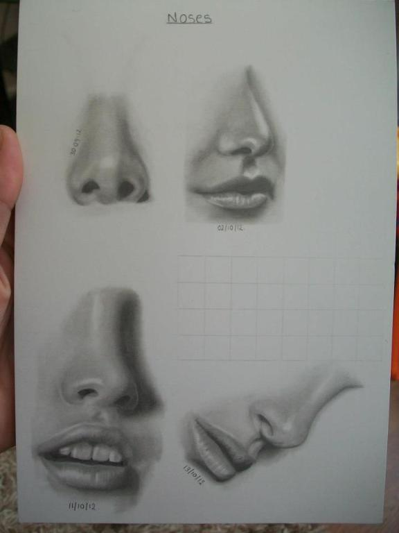 Pencil Study of Noses and Mouths