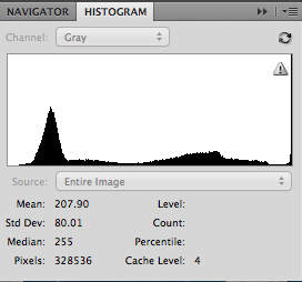 Portrait on white background histogram