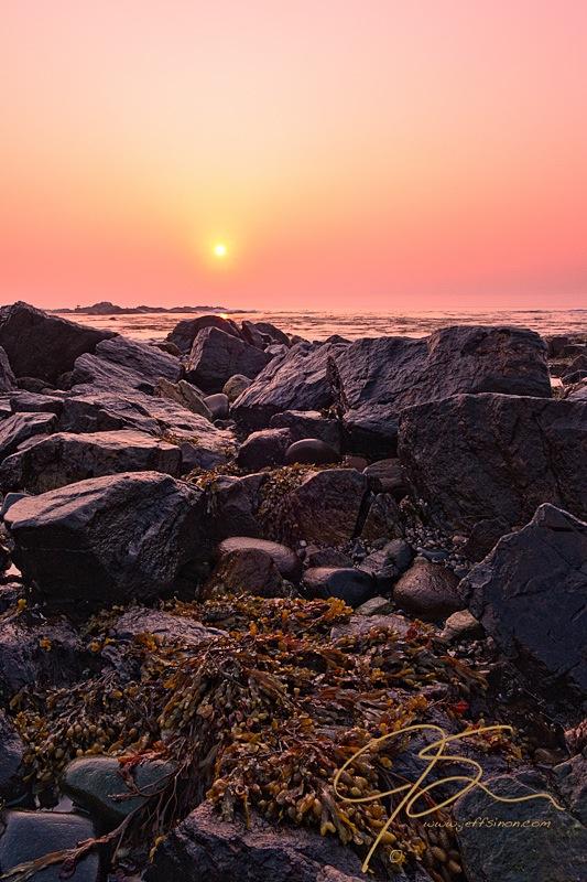 Rye, New Hampshire seacoast on a foggy morning
