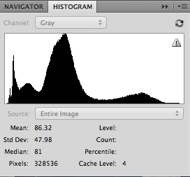 Histogram for black and white photograph
