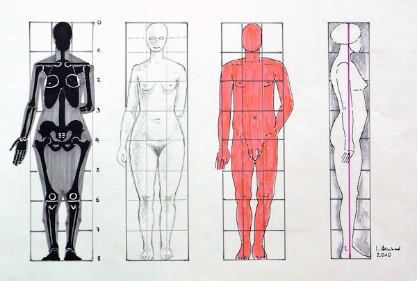 Human body proportions by Ingeborg Bernhard