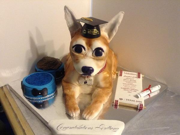 Chihuahua Graduation Cake
