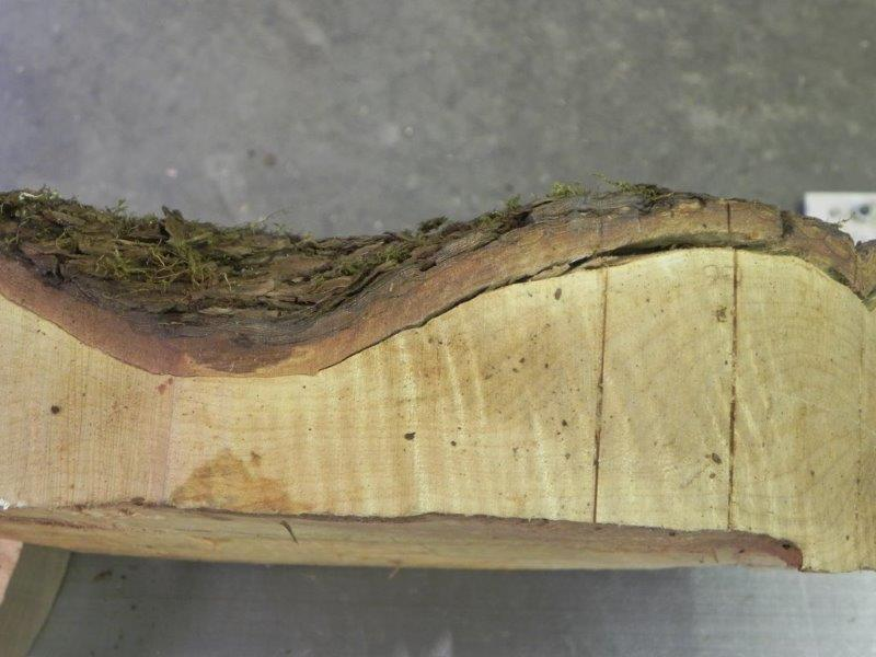 Loose Bark on Woodturning Blank