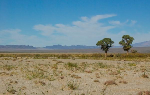 photo of the Gobi Desert horizon