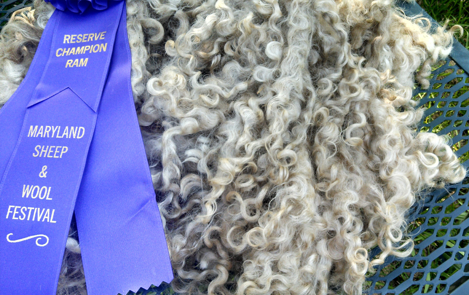 Cotswold Locks by Blue Barn Fiber