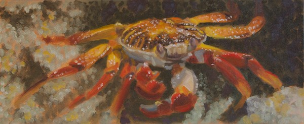 Color study for the crab painting, about  6x14""