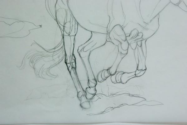 Sketch of Horses Leg