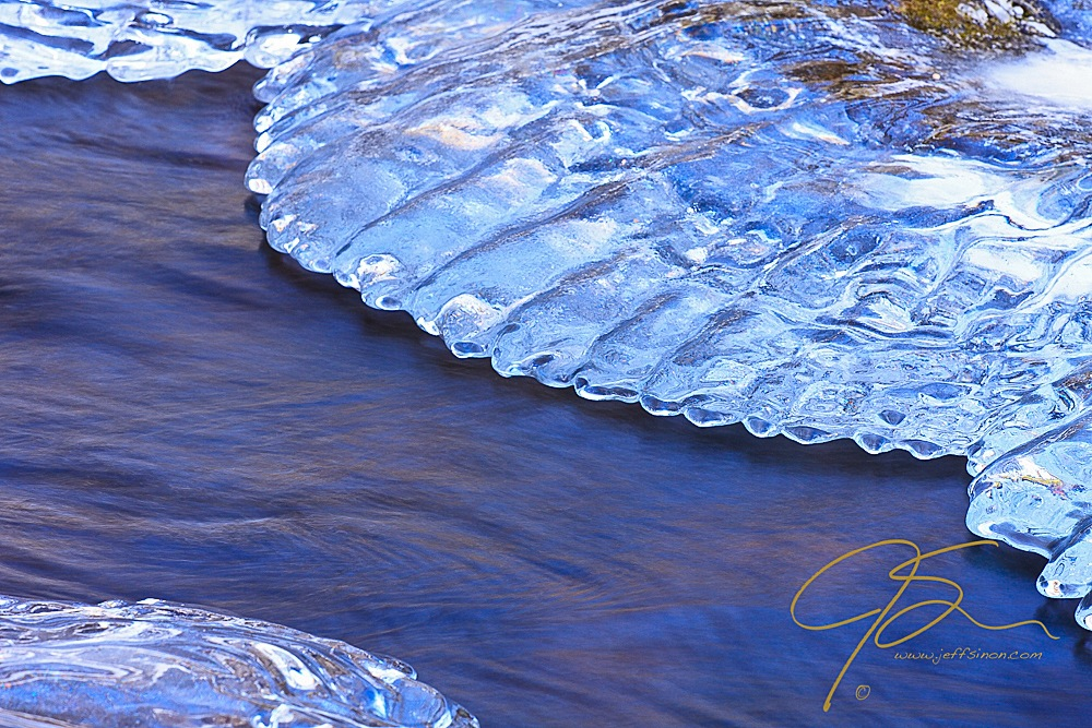 Ice forming along the banks of a stream