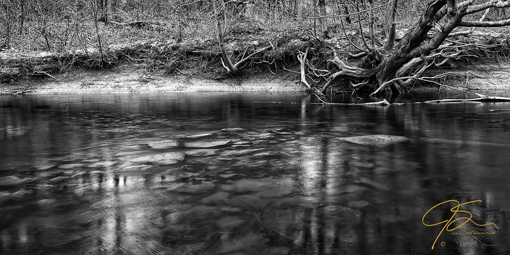 Haunting black and white image of a riverbank