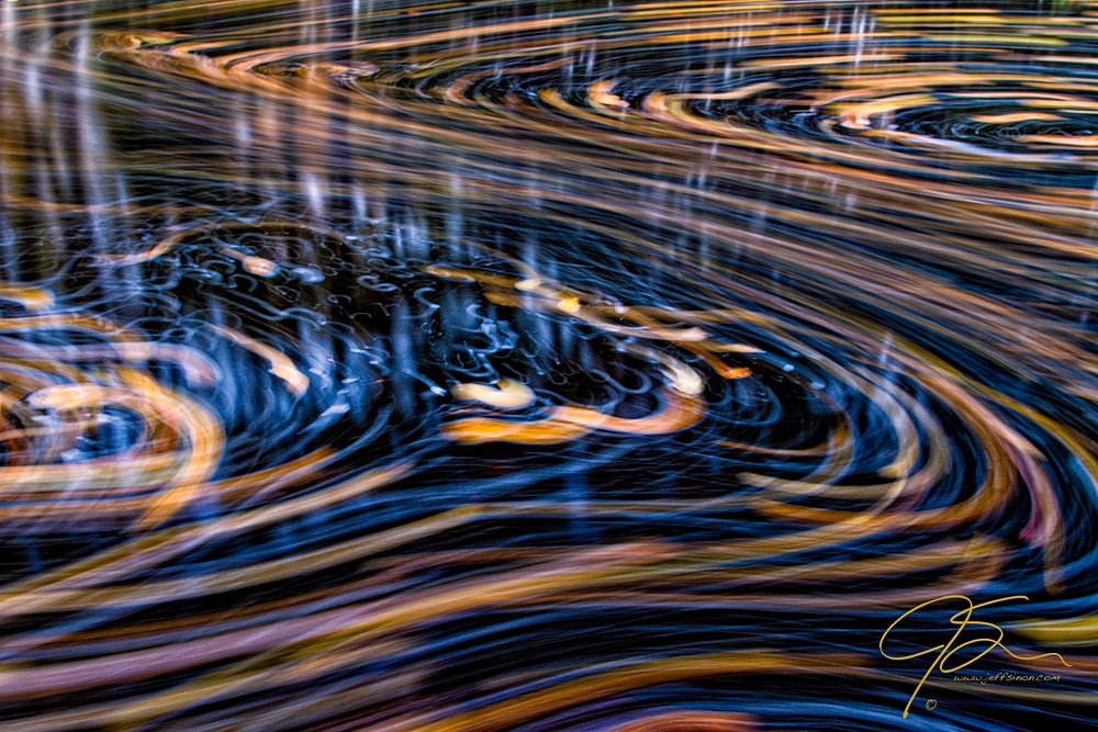 Fallen Leaves on a Stream Captured Using Long Exposure