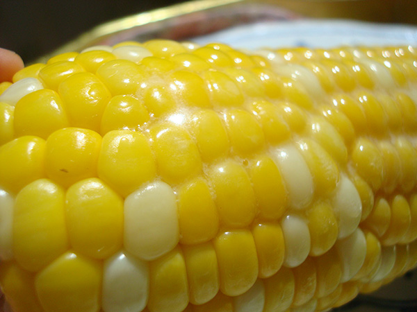 Butter melting on corn