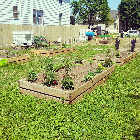 community garden rainwater