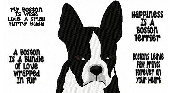 Boston Terrier by Izabellas Designs