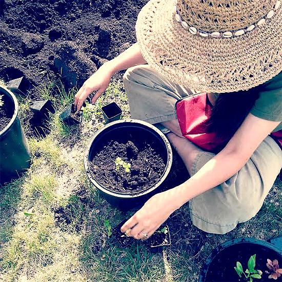 A gardener planting seeds