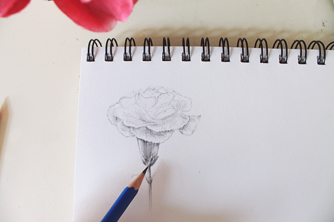 Drawing flowers finishing step
