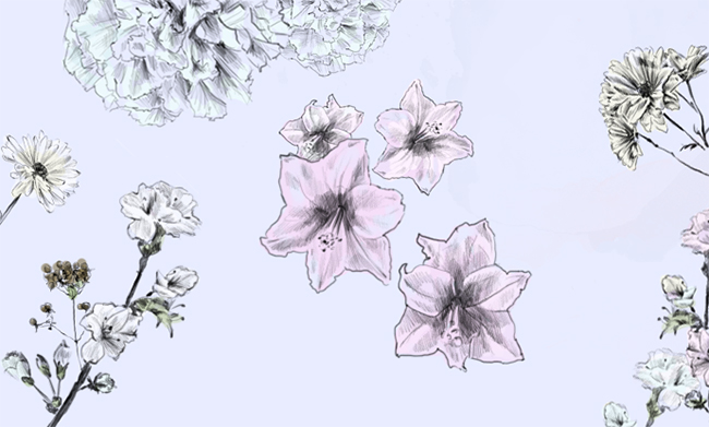Beautiful hand-drawn flower wallpaper