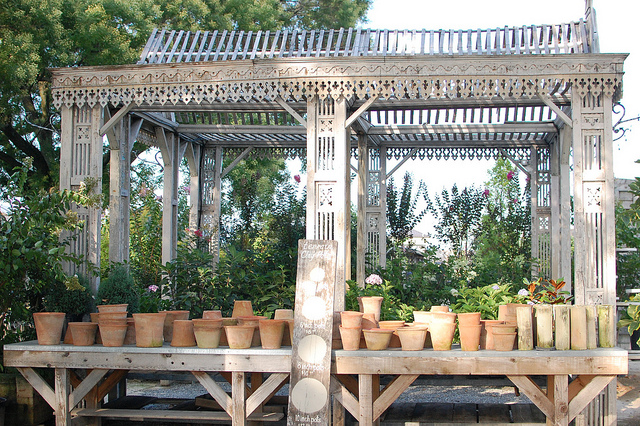 Collection of Terracotta Planters