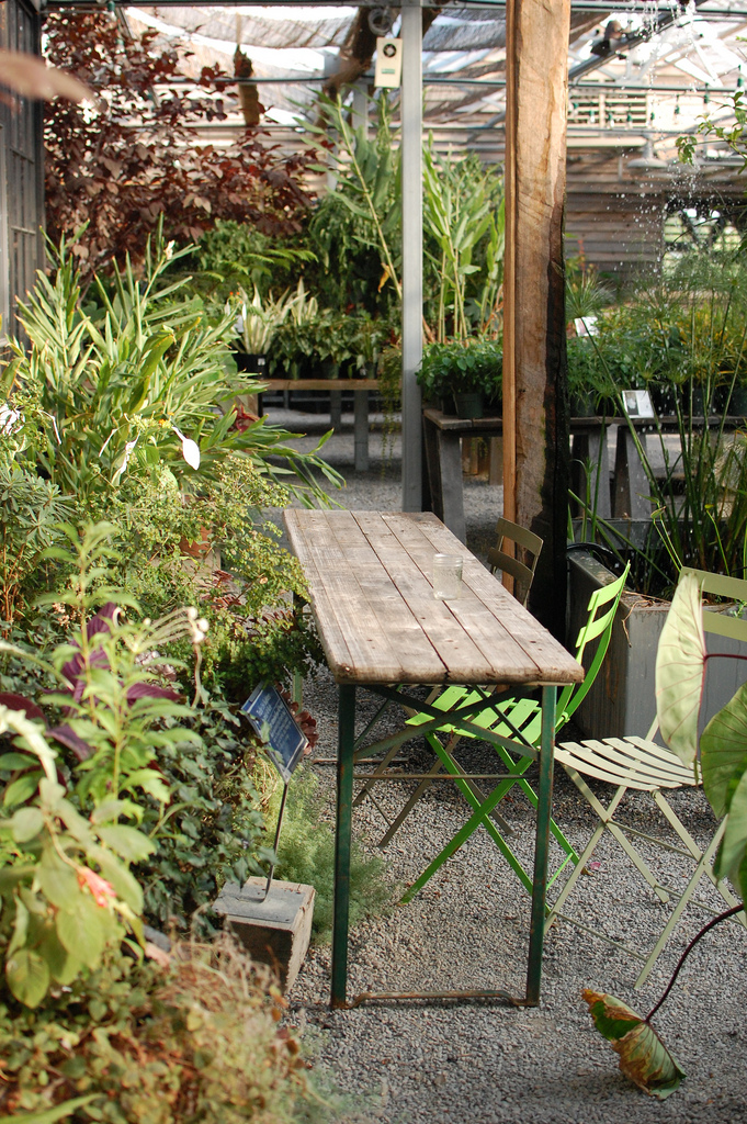 Wooden Table and Benches in Garden Store