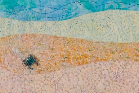 Beach landscape with beaded crab