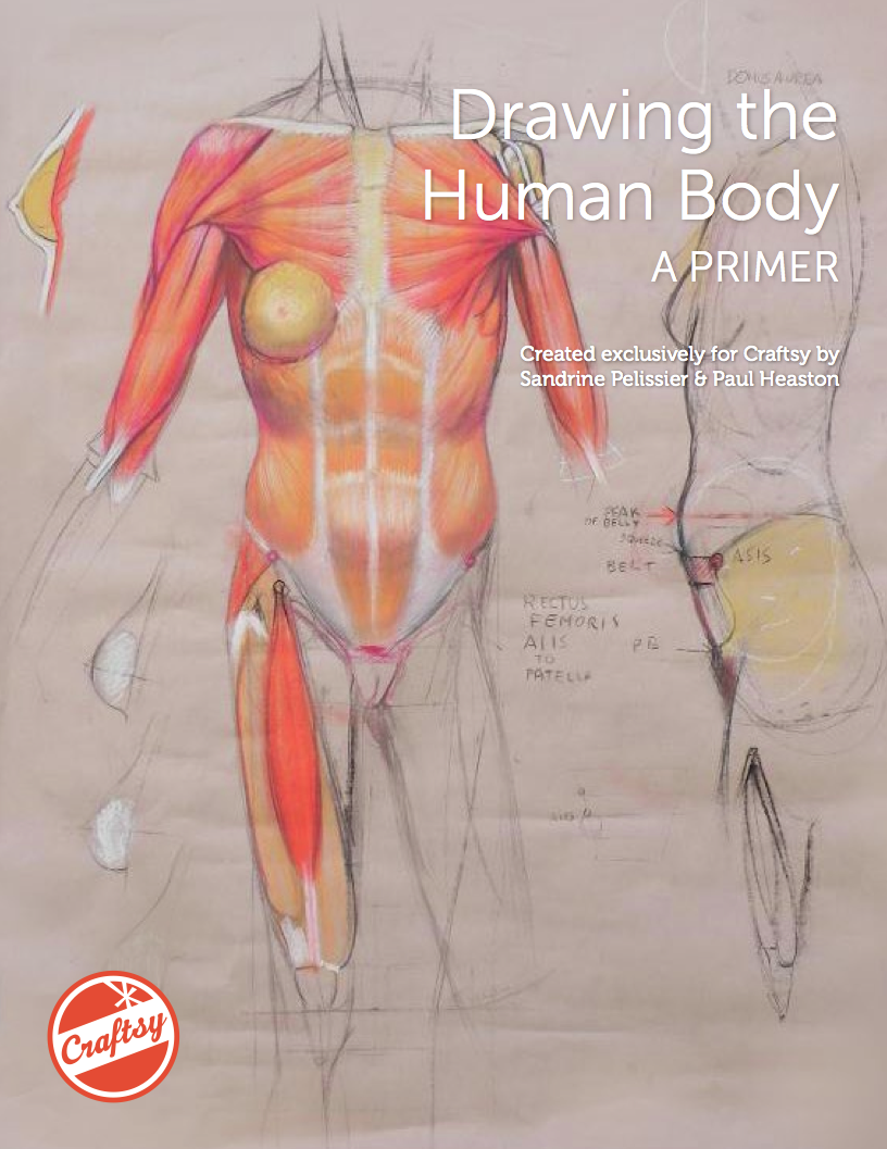 How to Draw the Human Body: FREE eGuide from Bluprint