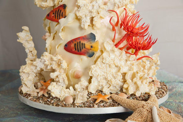 White chocolate coral and fish under-the-sea cake!